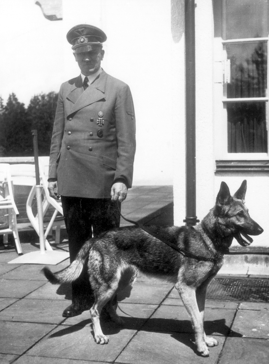Adolf Hitler with his dog Blondi at the Berghof, from Eva Braun's albums